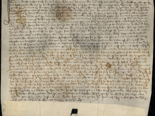 1565 Erwähnung eines Wingerts zu Scheid