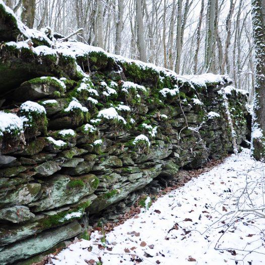 Mauerreste am Eichenauer Berg