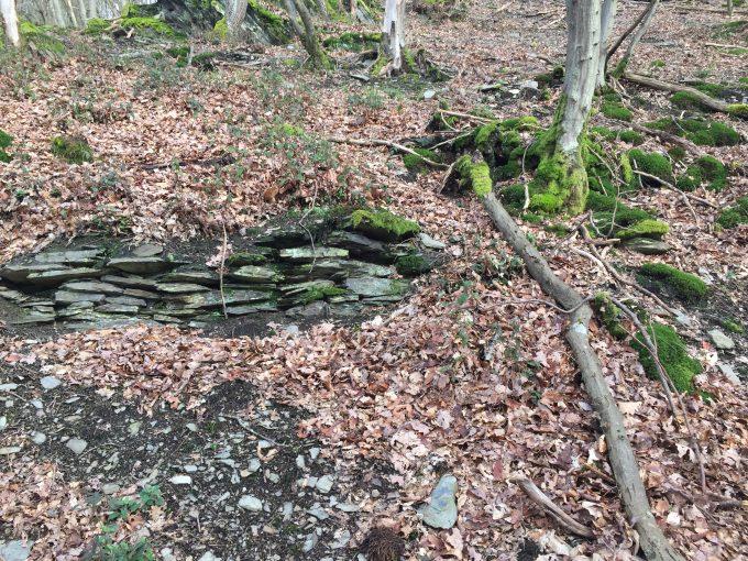 Überreste einer Weinbergsmauer an der Tornlay