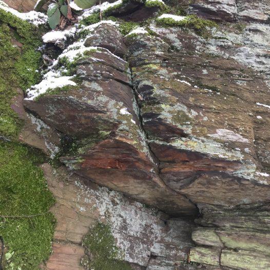 Bruch- und Sägespuren des Schieferplattenabbaus für den Bau von Weinbergsmauern südlich der Hasenlay bei Scheidt