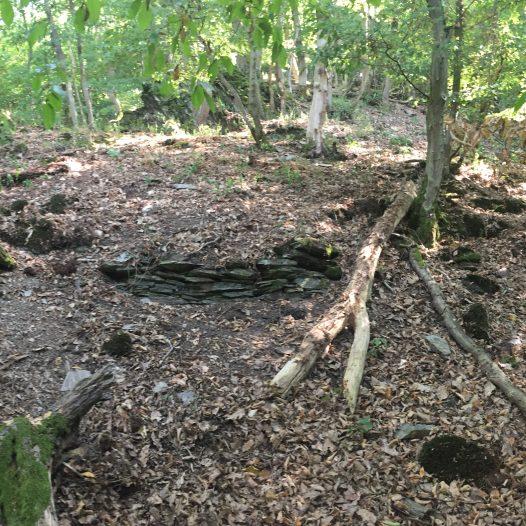 Überreste von Weinbergsmauern an der Tornlay