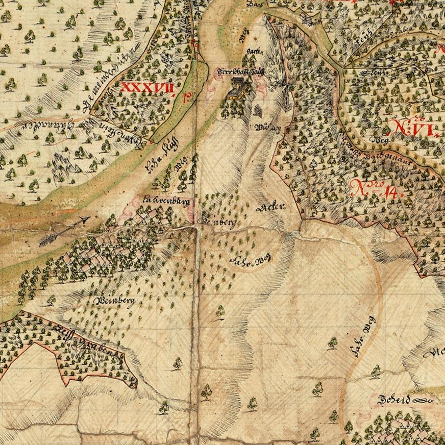 Kartenausschnitt der Weinberge bei Laurenburg