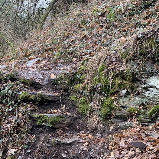 Mauerrest mit Treppe am Burgberg