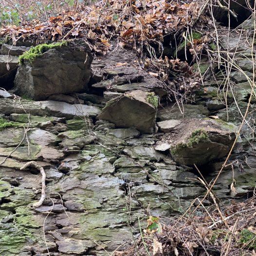 Mauerrest mit Freitreppe am Burgberg
