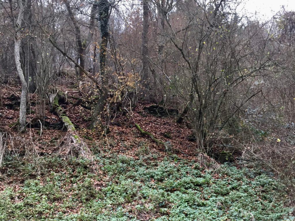 Fragmente von Weinbergsmauern am Fuße des Auberges