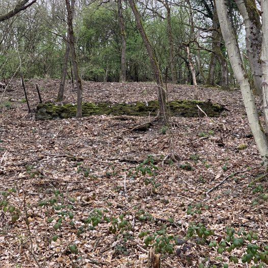 Mauerreste in der ehemaligen Lage 'Auf dem alten Herd', Weinähr