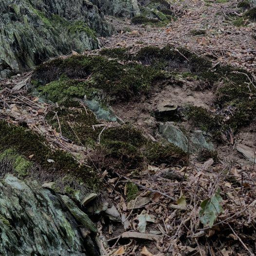 Fragmente einer Stützmauer an der unbenannten Lay südlich der Hasenlay