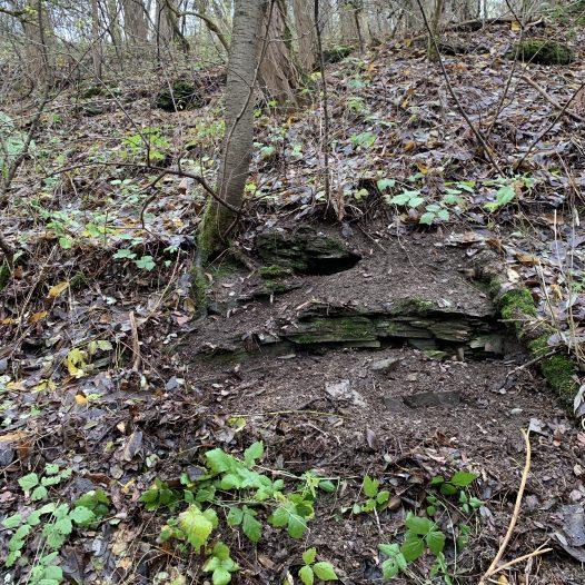 Mauerfragmente im Dörsbachgraben bei Freiendiez