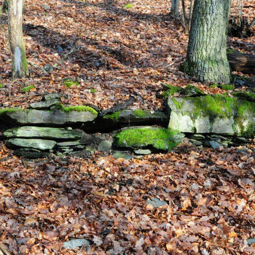 Mauerfragmente am Schenkelberg