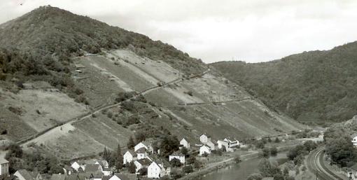 Obernhofer Goetheberg