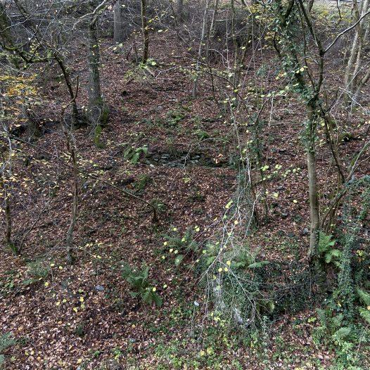Mauerreste am Südhang des Langebergs